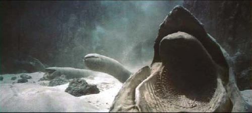 Dune Sandworms