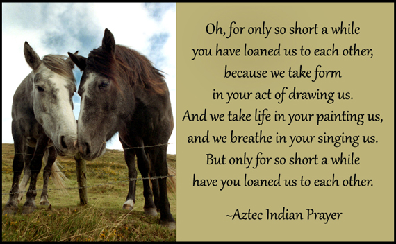 Aztec Prayer with Connemara Horses