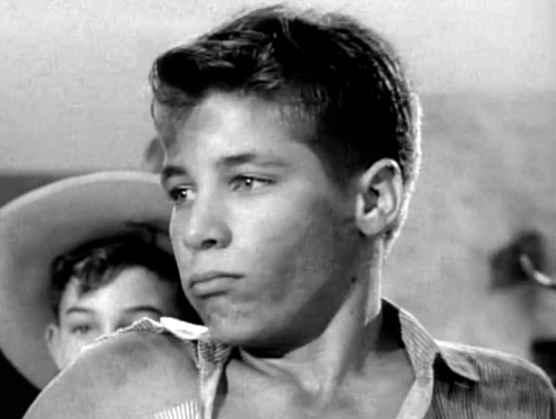 Don Grady in The Rifleman (The Patsy, season 2)